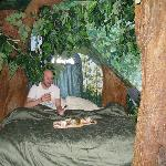  Breakfast in bed in The Enchanted Forest