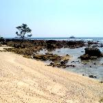  Coral Beach Which Surrounds Pulau Umang