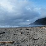  manzanita beach