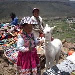  Paseo al can del Colca