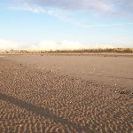  Crosby beach