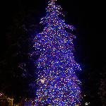 Christmas tree in Vail Village