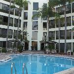 Φωτογραφία: Holiday Inn St. Petersburg North / Clearwater