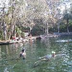 Photo de Wekiwa Springs State Park