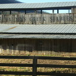 Walden Creek Horseback Riding Stables