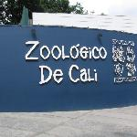  Cali Zoo