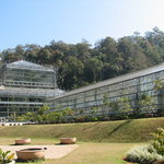 Queen Sirikit Botanic Garden