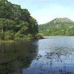 Periyar Wildlife Sanctuary Foto