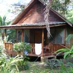 Golfo Dulce Lodge