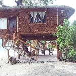  Family Tree House