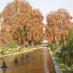 Mughal Gardens