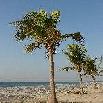 Salalah Beach Villas照片