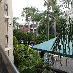 Bilde fra Baymont Inn and Suites Tampa near Busch Gardens/USF