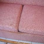 stained and moldy couch