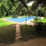 The pool and braai area