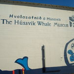 The Hsavk whale museum.