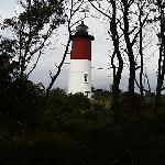 A view of the lighthouse through the trees.