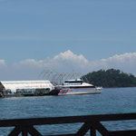 Langkawi Coral