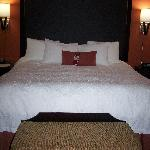 Foto de Hampton Inn & Suites Waco South