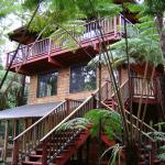 Guest Cottages at Volcano Tree House
