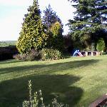 A view of the lovely garden