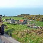 Rush hour on Cape Clear