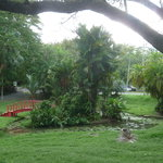 Jardin Botanico