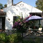 Bilde fra El Magnolio Bed and Breakfast