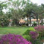 Picture of hotel grounds in Xishuangbanna Yunnan