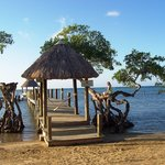 Foto de Tranquilseas Eco Lodge and Dive Center
