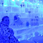 The Artic Circle Ice Bar at Santa Park - don't go to the park!