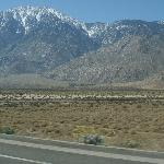  Road to Palm Springs, CA