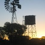Windmill and Tankstand - Ooraminna