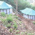 Pretty tents on a slope