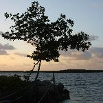 Key Largo House Boatel Foto