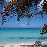 Photo de Shields Negril Villas