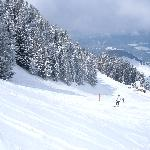 One of Soll's slopes