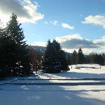 view next to the evergreen and of the golf course