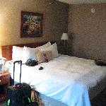 Φωτογραφία: Hampton Inn Detroit Belleville