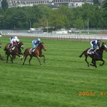 Hippodrome d'Auteuil