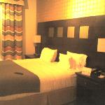 Foto van Holiday Inn Express Hotel & Suites Dallas South-DeSoto