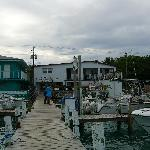 Weech's Bimini Dock and Bay View Roomsの写真