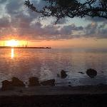 Big Pine Key Fishing Lodge의 사진