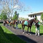  Keeneland