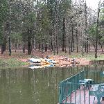 Foto de Deer Lake Cabins