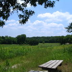 The First Sitting Area on the BlueStem Trail