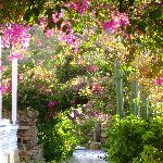 the most trditional hotel in leros