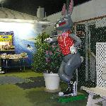 Ryan's Mini-Golf Rabbit, Bargain Book Bin, and Golf HUT near entrance & Hole 19