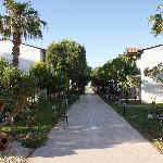 Bilde fra Asa Club Holiday Resort