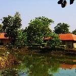 A view of the pond and cottages